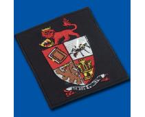 The Sting school blazer badge