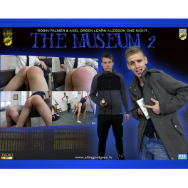 The Museum 2 HD