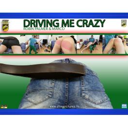 Driving Me Crazy HD