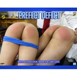 Prefect Defect HD