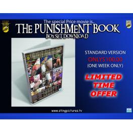 The Punishment Book Box Set