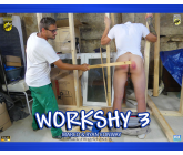 Workshy 3 HD