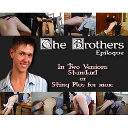 The Brothers Epilogue Sex Files