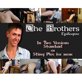 The Brothers Epilogue Standard Version